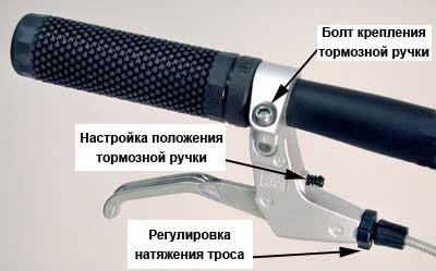 ввввввввв_1